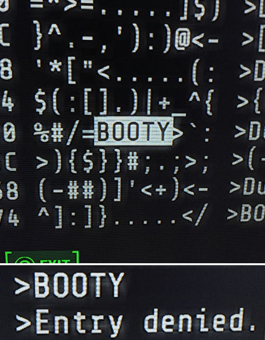 when-youre-trying-to-hack-that-booty-in-fallout-but-access-is-denied