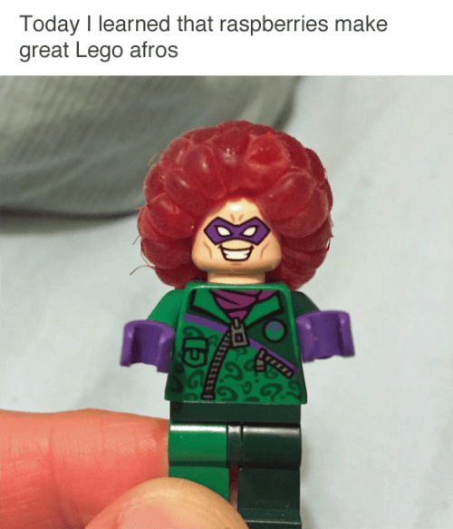 image legos raspberry This Is an Advancement for Civilization