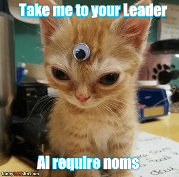require kitten take noms caption leader