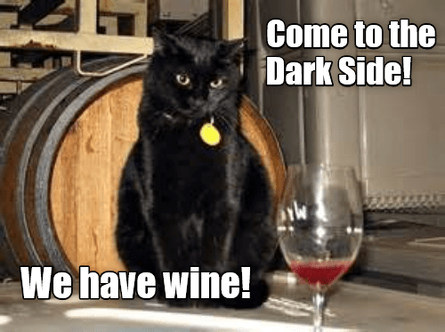 Thar's wine in that thar Basement!