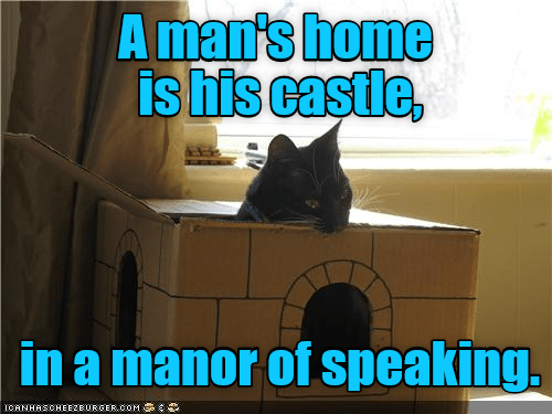 speaking cat castle homeless manor caption - 8975162624
