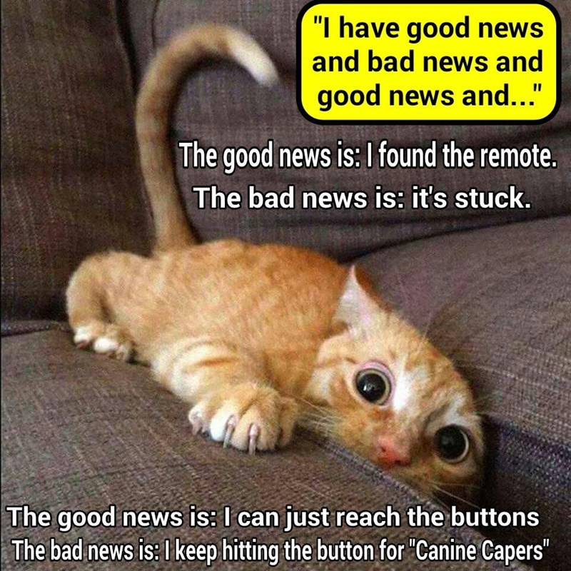 """I have good news and bad news"" (recaption: http://tinyurl.com/zdnczym"