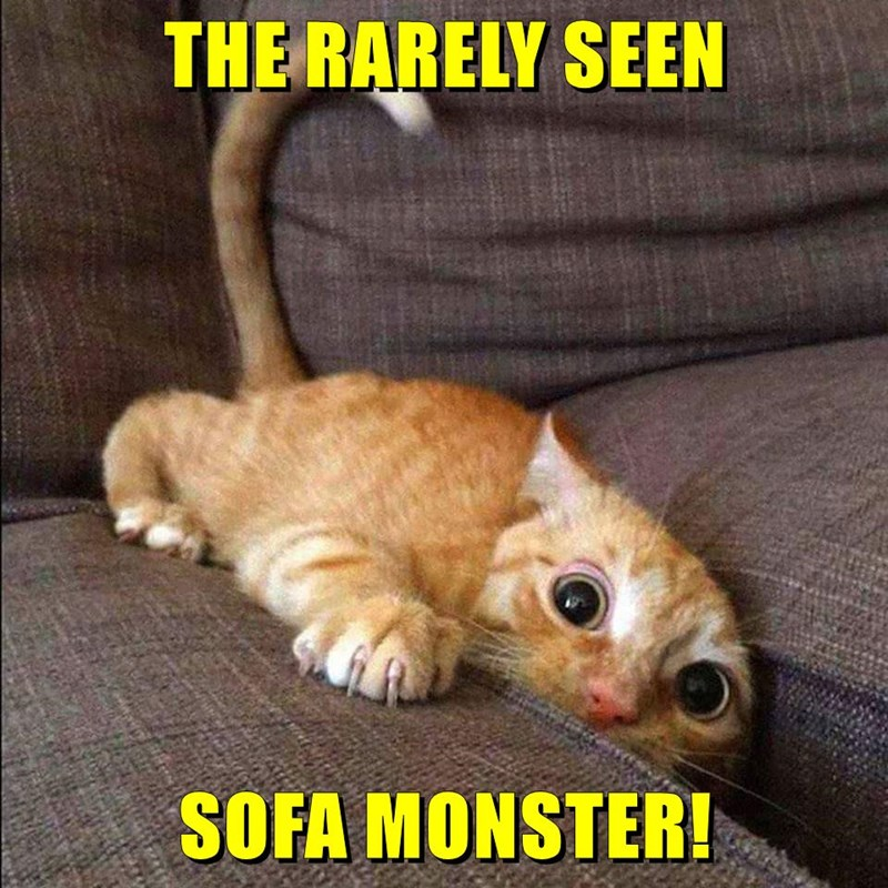 THE RARELY SEEN  SOFA MONSTER!