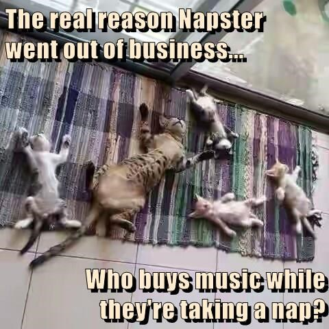 The real reason Napster      went out of business...  Who buys music while they're taking a nap?