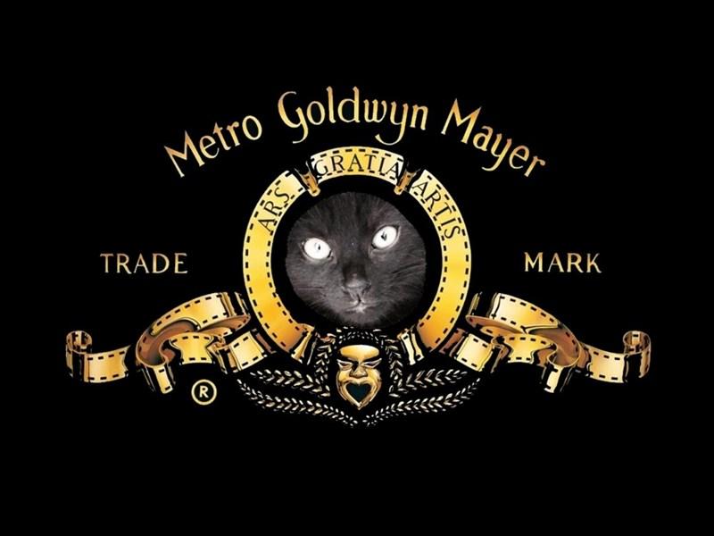 Illustration - Metro yoldwyn Mayer MARK TRADE ARTIS