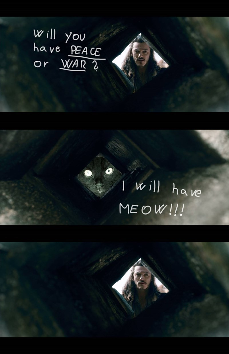 Darkness - Will you have PEA CE WAR 2 or 1will have MEOW!!!