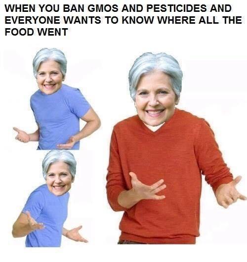 Jill Stein,politics