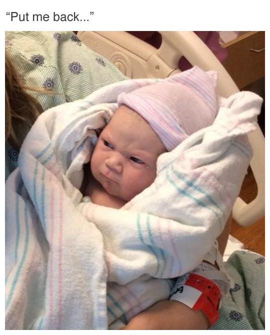 Babies parenting newborn - 8975649024