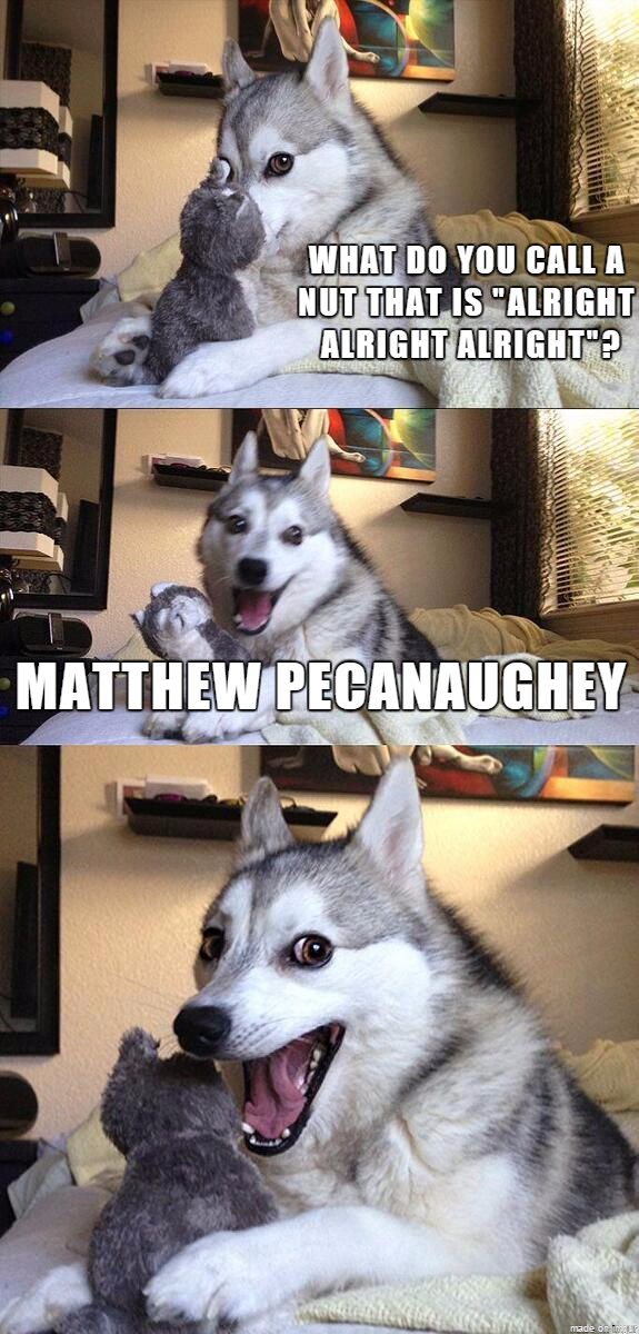 matthew mcconaughey,dogs,caption