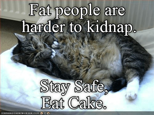 lolcats - Cat - Fat people are harder to kidnap. Stay Safe, Eat Cake. ICANHASCHEEZBURGER.COM
