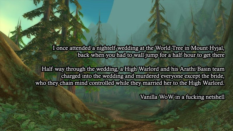 blizzard-world-of-warcraft-video-game-logic