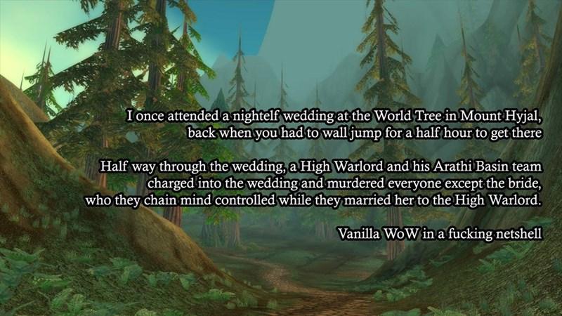 blizzard-world-of-warcraft-video-game-logic