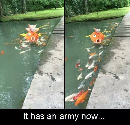 pokemon-in-real-life-magikarp-with-the-fishy-reinforcements