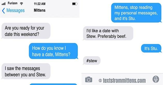 cat texts mittens funny