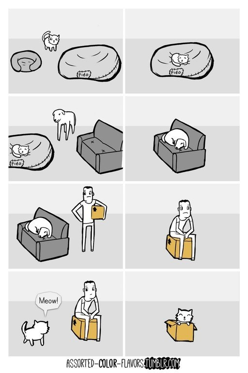 web comics pets seats It's an Endless Cycle