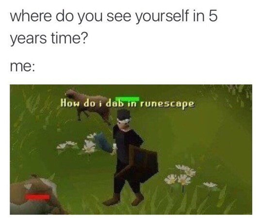 runescape-video-game-moment-where-do-you-see-yourself-in-5-years