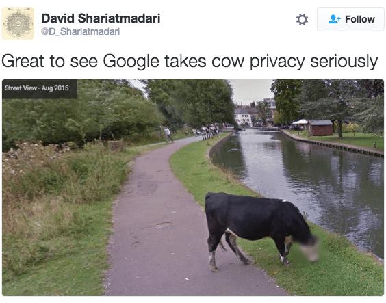 Water resources - David Shariatmadari Follow @D_Shariatmadari Great to see Google takes cow privacy seriously Street View-Aug 2015