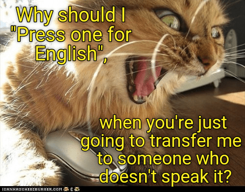 tansfer,cat,english,doesnt,press,speak,why