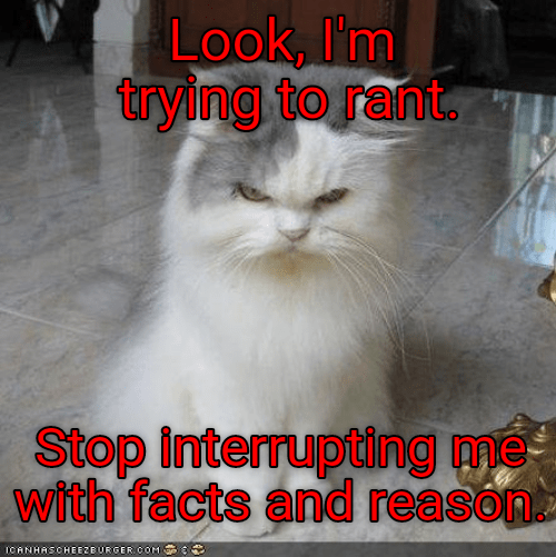cat facts rant interrupting caption stop trying - 8976908800