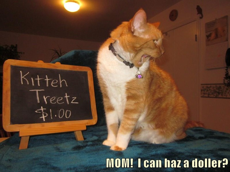 MOM!  I can haz a doller?