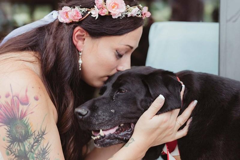 Sad,dogs,labrador,photography,wedding,sweet,tears