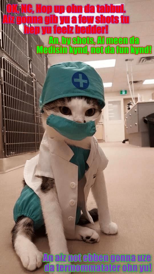 Dr. Tinycat Iz Bery Kynd!