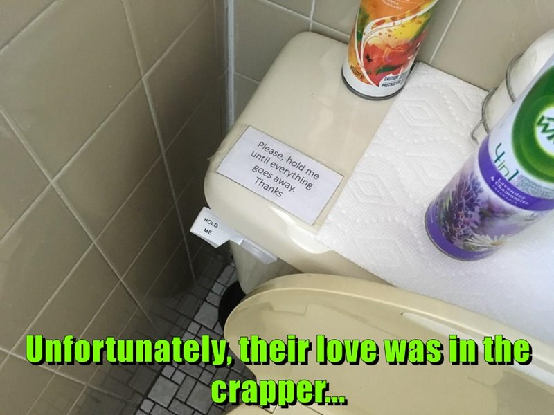 Unfortunately, their love was in the crapper...