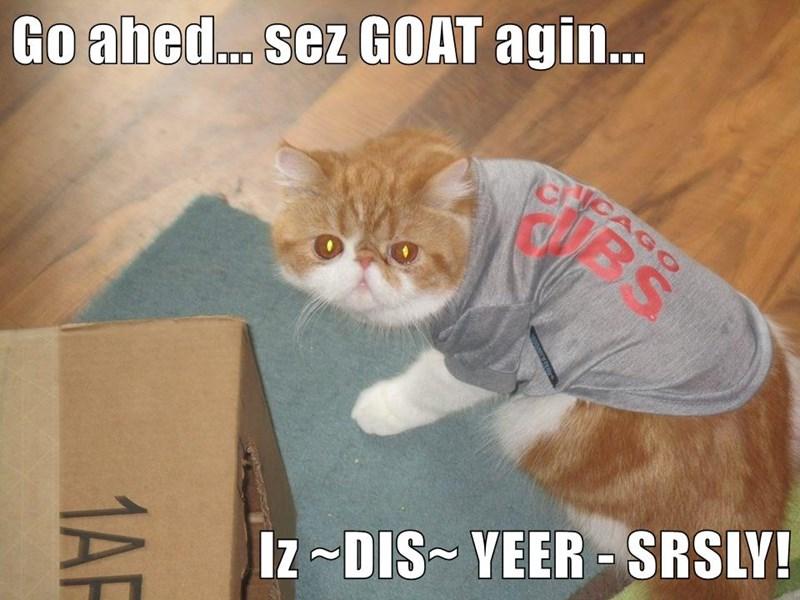 Go ahed... sez GOAT agin...  Iz ~DIS~ YEER - SRSLY!