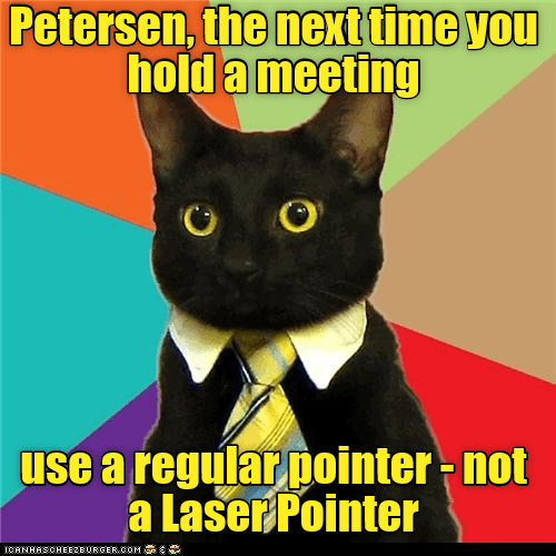 cat,next,time,meeting,laser pointer,not,caption,regular
