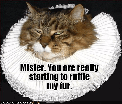 fur cat mister caption ruffle - 8977550848