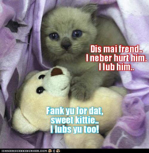hurt never kitten friend love caption - 8977790976