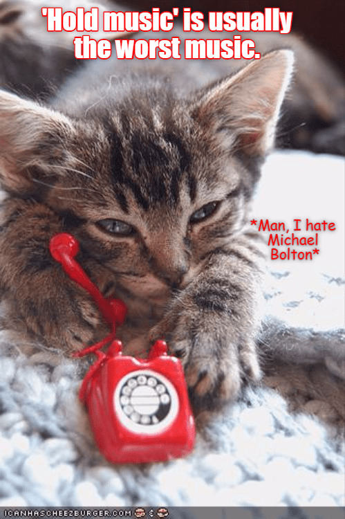 hate,cat,Music,hold,caption,worst,Michael Bolton