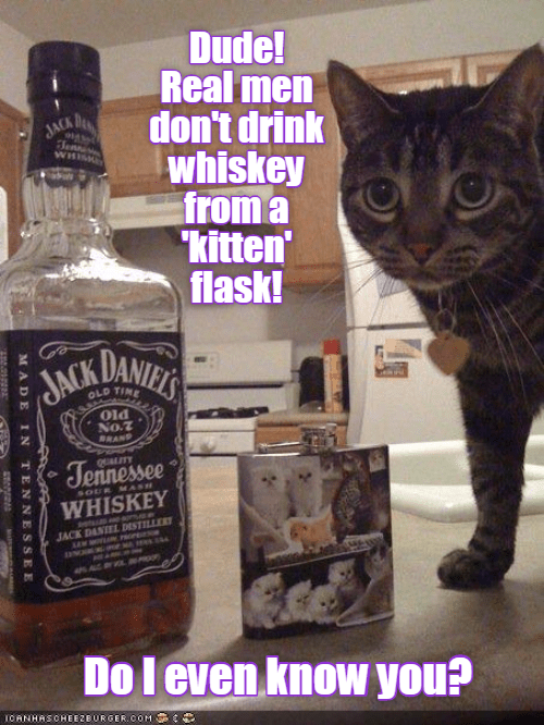 drink,cat,whiskey,kitten,flask,real men,dont,caption