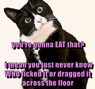 you're gonna EAT that?  i mean you just never know WHO licked it or dragged it across the floor