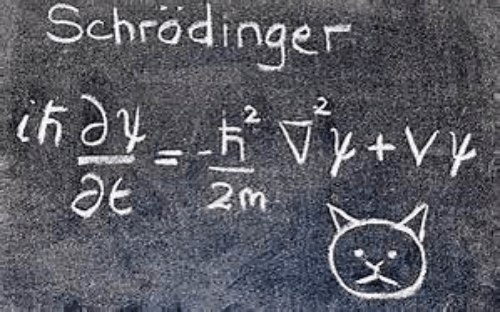 Mathematical proof of the existance of Grumpy cat
