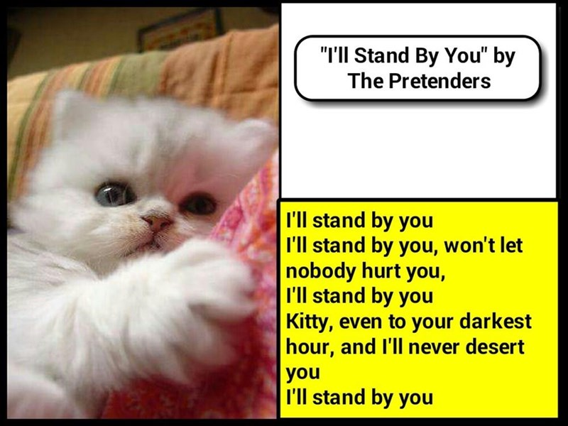 """I'll Stand By You"" by The Pretenders (recaption: http://tinyurl.com/hhymv5e"