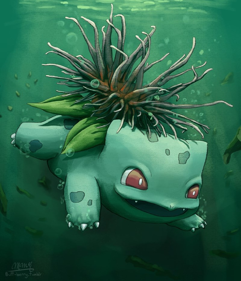 sea-anemone-version-bulbasaur-loves-to-swim