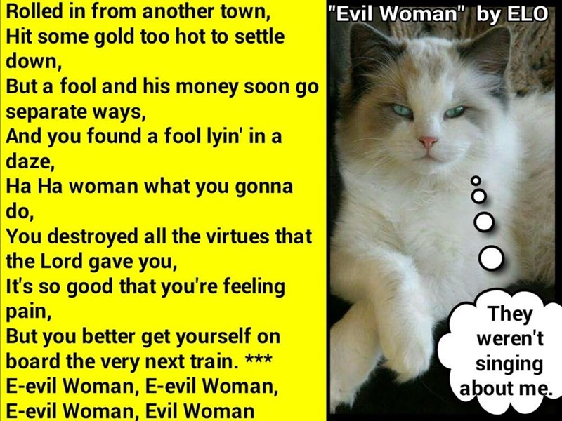 """Evil Woman""  by ELO (recaption: http://tinyurl.com/jpj53kg"