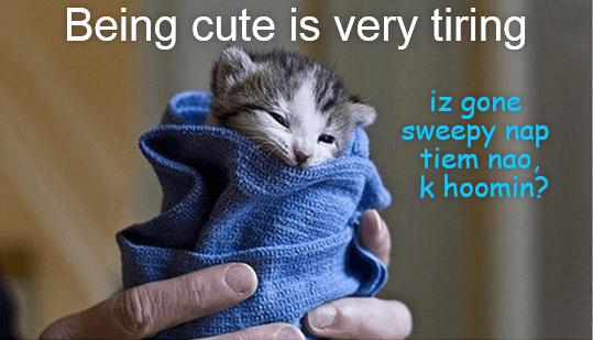 Being cute is very tiring