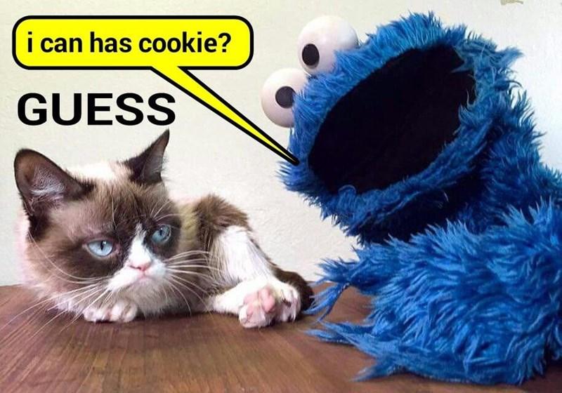 That's the way the cookie crumbles   (recaption: http://tinyurl.com/jkcqhtg