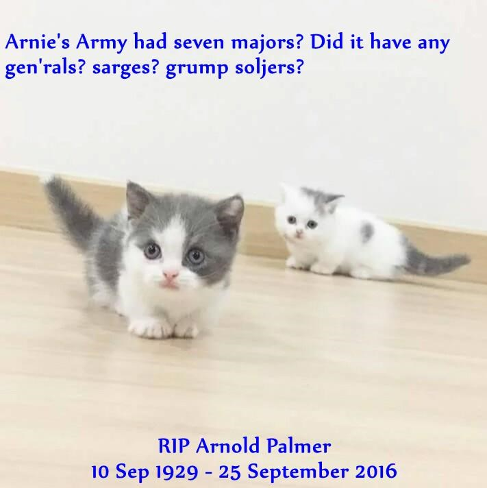 Arnie's Army had seven majors? Did it have any gen'rals? sarges? grump soljers?  RIP Arnold Palmer                                                                                                                                    10 Sep 1929 - 25 Septembe