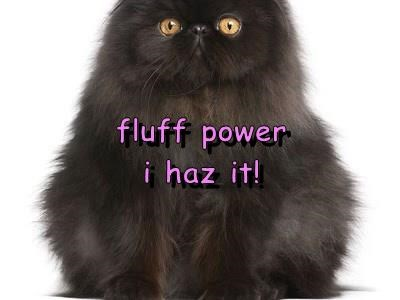 fluff power                                                             i haz it!