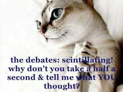 the debates: scintillating!                     why don't you take a half a second & tell me what YOU thought?