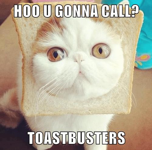 HOO U GONNA CALL?  TOASTBUSTERS