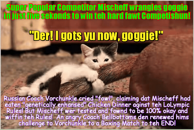 """RIO LOLYMPICS NEWS FLASH: Just in! Wunderkitten Mischief scores huge upset in teh Goggie Wrangling Competition and takes home another Gold Medal! Upset dat teh leading Russian athlete wer defeated, Russian Coach Vorchunkle cries """"fowl""""!"""
