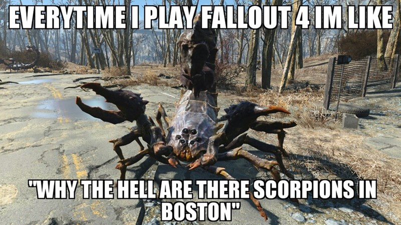 fallout-4-scorpion-monster-logic-be-like