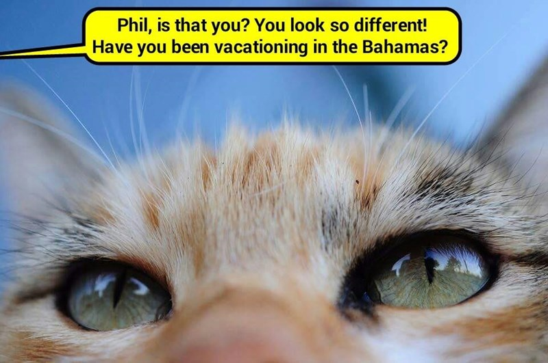 Bad Phil impersonation?  (recaption: http://tinyurl.com/zpned3b