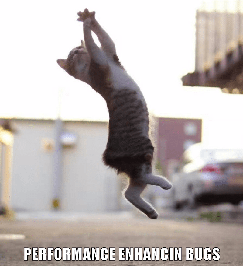PERFORMANCE ENHANCIN BUGS