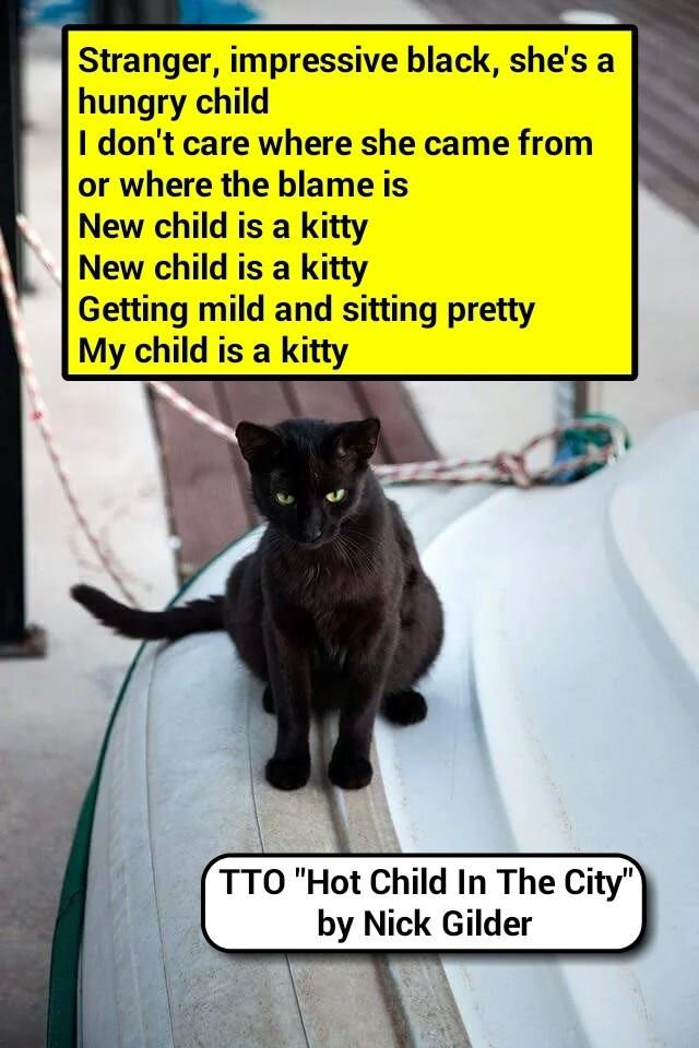 """""""Adopting A Stray"""" (TTO """"Hot Child In The City"""" by Nick Gilder) (recaption: http://tinyurl.com/jx8lhax"""