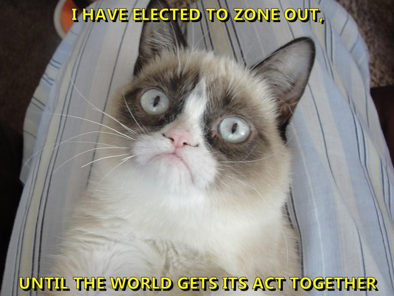 I HAVE ELECTED TO ZONE OUT,  UNTIL THE WORLD GETS ITS ACT TOGETHER